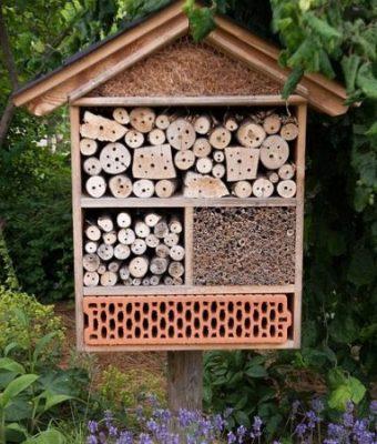 eksempel innsektshotell